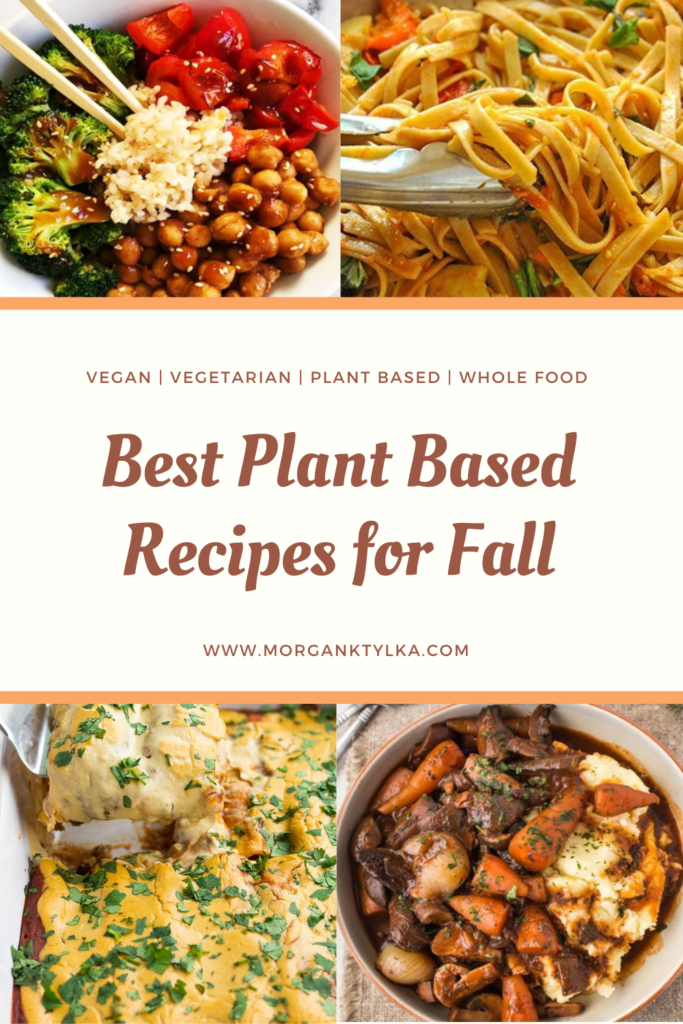 best plant based recipes